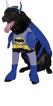 Batman Brave And Bold Pet