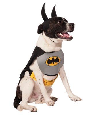 Batman Classic Pet